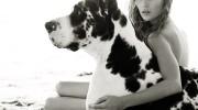 Salió el libro «Perros en Vogue: un siglo de canes chic»