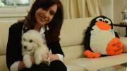 Reapareció Cristina junto a su perro Simón