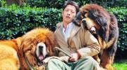 Perros de 2 millones son última moda en China