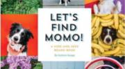 Find momo tiene nuevo libro