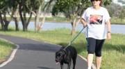 Realizan campaña para ponerle nombre al perro de Dilma Rousseff