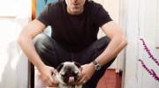 Hugh Laurie y otros famosos tienen un Pug Carlino como mascota