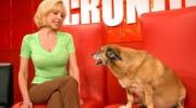 Quiénes son las celebridades que eligieron adoptar una mascota?