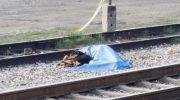 Fue atropellado por un tren y su perro fiel no quiso separarse del cadáver